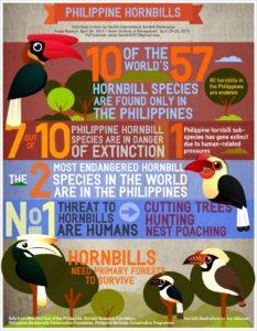 biodiversity-infographic9-philippine-hornbills